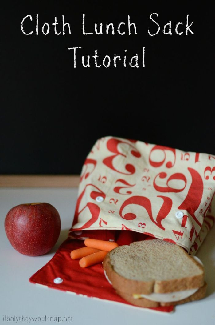 Easy To Sew Lunch Sacks For Back To School If Only They
